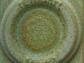 RM-100